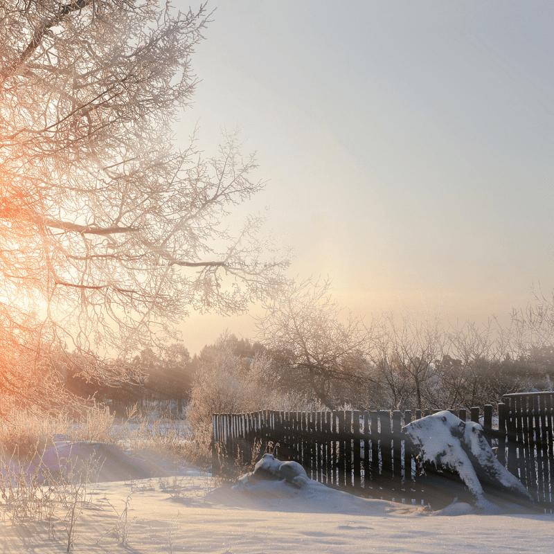 winter frozen ground